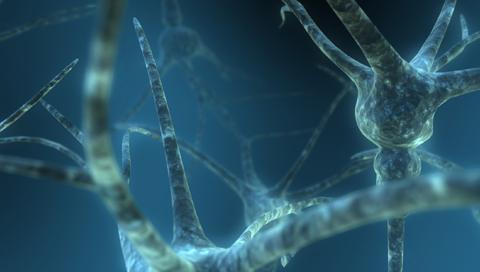 Scifibgs-Dual_Neuron2.jpg