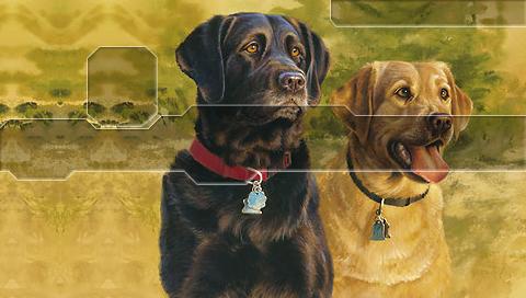 dogs1gm.jpg