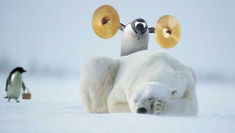 penguin_music_480x272.jpg