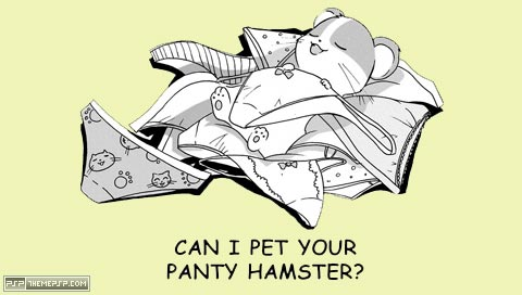 pantyhampster.jpg