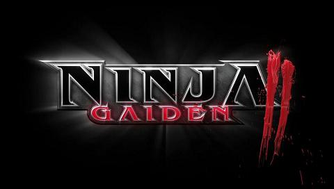 Ninja Gaiden 2 Wallpaper.JPG