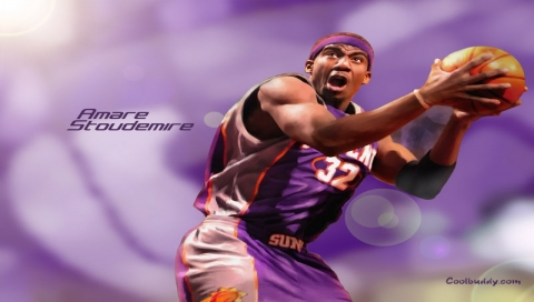 AMARE STOUDEMIRE~0.jpg