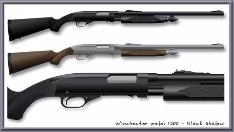 Shotgun_1.jpg